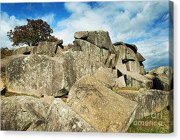 Devil's Den Formation 87 Canvas Print by Paul W Faust -  Impressions of Light