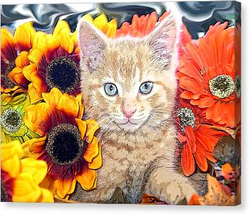 Di Milo - Sun Flower Kitten With Blue Eyes - Kitty Cat In Fall Autumn Colors With Gerbera Flowers Canvas Print by Chantal PhotoPix