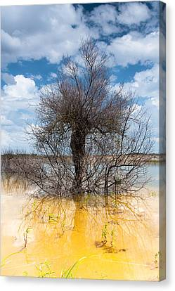Canvas Print featuring the photograph Die Standing by Edgar Laureano