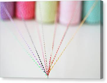 Different Colored Twine Twisting Together Canvas Print by © Stacey Winters  www.staceywinters.com