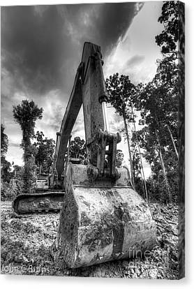 Canvas Print featuring the photograph Digging The Rainforest by John Burns