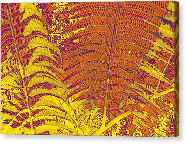 Digital Ferns Canvas Print by Colleen Cannon