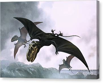 Dimorphodon Canvas Print by William Francis Phillipps