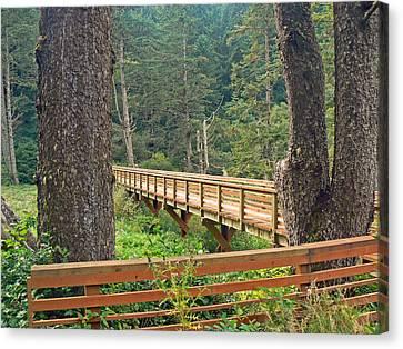 Discovery Trail Bridge Canvas Print by Pamela Patch