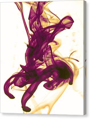 Divine Serenity Canvas Print by Sumit Mehndiratta