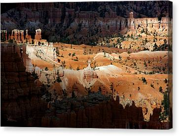 Canvas Print featuring the photograph Do You Bielive In Magic by Vicki Pelham