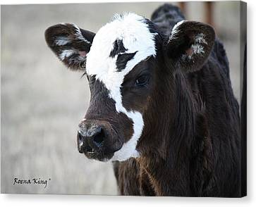 Canvas Print featuring the photograph Do You Like My Bow by Roena King