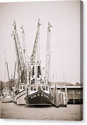 Docked Canvas Print by Donni Mac