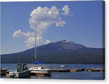 Canvas Print featuring the photograph Docks At Diamond Lake by Mick Anderson