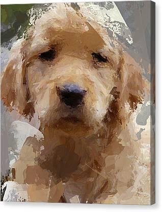 Dog 1 Canvas Print by Yury Malkov