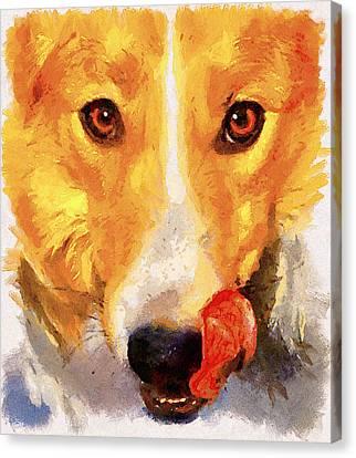 Dog Portrait Canvas Print by Yury Malkov