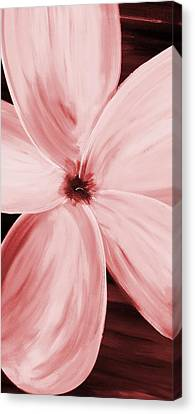 Dogwood Bloom Red  Canvas Print by Mark Moore
