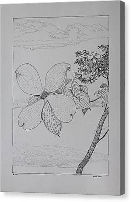 Canvas Print featuring the drawing Dogwood  by Daniel Reed