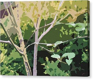Dogwood I Canvas Print
