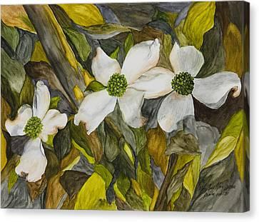 Dogwoods Canvas Print by Mary Ann King