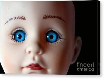 Doll Eyes Canvas Print by Dan Holm