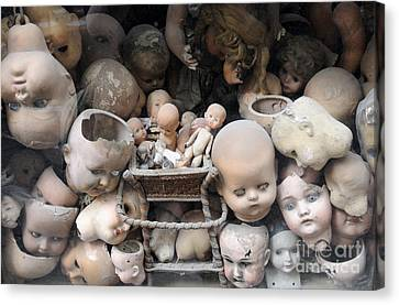 Doll Parts Canvas Print by Ed Rooney