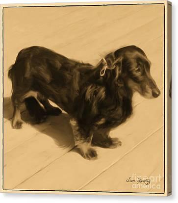 Dolled Up Dachshund 2 Canvas Print by Susan  Lipschutz