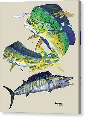 Dolphin And Wahoo Canvas Print by Kevin Brant