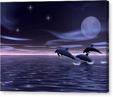 Dolphin Moon. Canvas Print by Walter Colvin