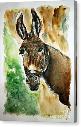 Donkey Canvas Print by Therese Alcorn