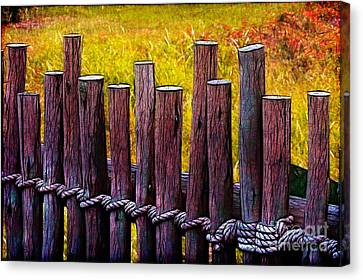 Don't Fence Me In Canvas Print by Judi Bagwell
