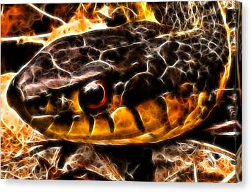 Canvas Print featuring the photograph Don't Tread On Me by Joetta West