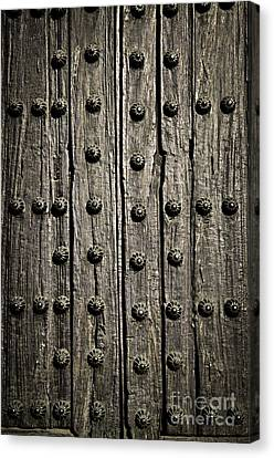 Door Detail Canvas Print by Elena Elisseeva