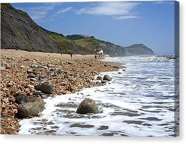 Canvas Print featuring the photograph Dorset Coast by Shirley Mitchell