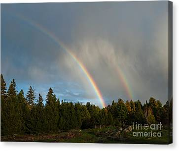 Canvas Print featuring the photograph Double Blessing by Cheryl Baxter