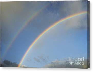 Double Rainbow Canvas Print by Sami Sarkis
