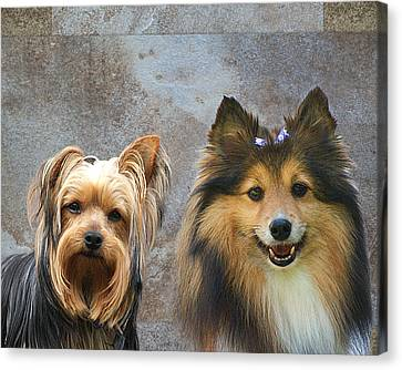 Double Trouble Canvas Print by Rick Friedle