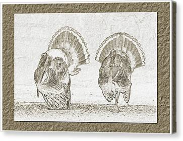 Double Trouble Canvas Print by Wild Expressions Photography