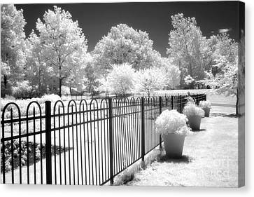 Surreal Infrared Art Canvas Print - Dow Gardens Infrared Michigan Landscape Fine Art by Kathy Fornal