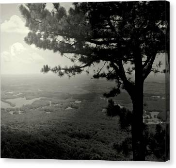Down In The Valley Canvas Print by Karen Wiles