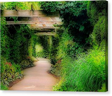 Down The Garden Path Canvas Print by Blair Wainman