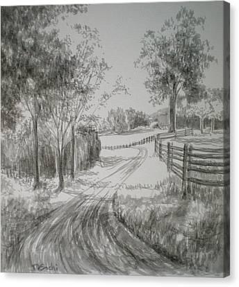 Down The Lane Canvas Print