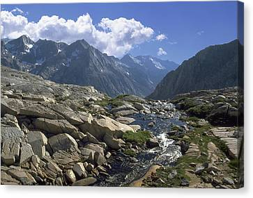 Down To  Kings River Canvas Print