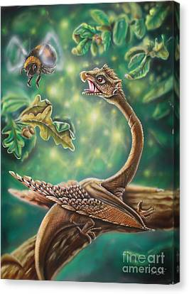 Dragon Canvas Print by Daniel Stimpel