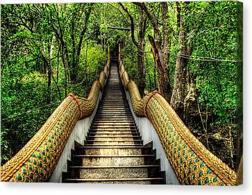 Dragon Steps Canvas Print by Adrian Evans