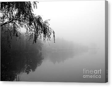 Canvas Print featuring the photograph Dream by Adrian LaRoque