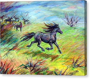 Canvas Print featuring the painting Dream Horse In Flight by Nancy Tilles