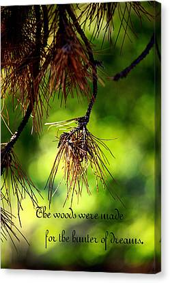 Dream Hunter In The Woods Canvas Print by Toni Hopper