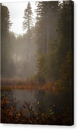 Dream Of Autumn Canvas Print by Mike Reid