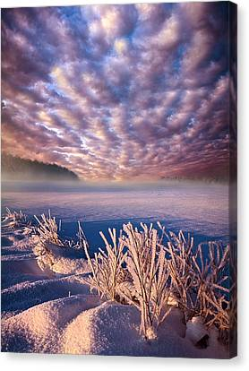 Dream Of Waking Canvas Print by Phil Koch