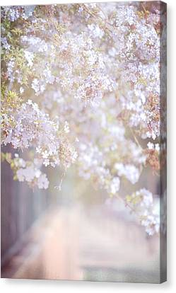 Dreaming Of Spring Canvas Print by Jenny Rainbow