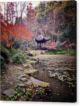 Dreaming Of Tiger Spring (hangzhou, China) Canvas Print