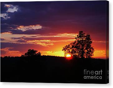 Canvas Print featuring the photograph Dreams Golden Lining by Julie Clements