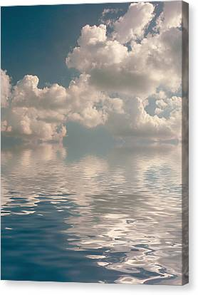 Dreamscape Canvas Print by Jerry McElroy