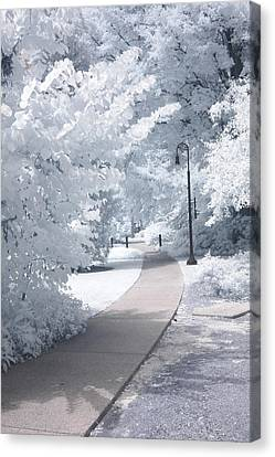 Surreal Infrared Art Canvas Print - Dreamy Infrared Michigan Park Nature Landscape by Kathy Fornal